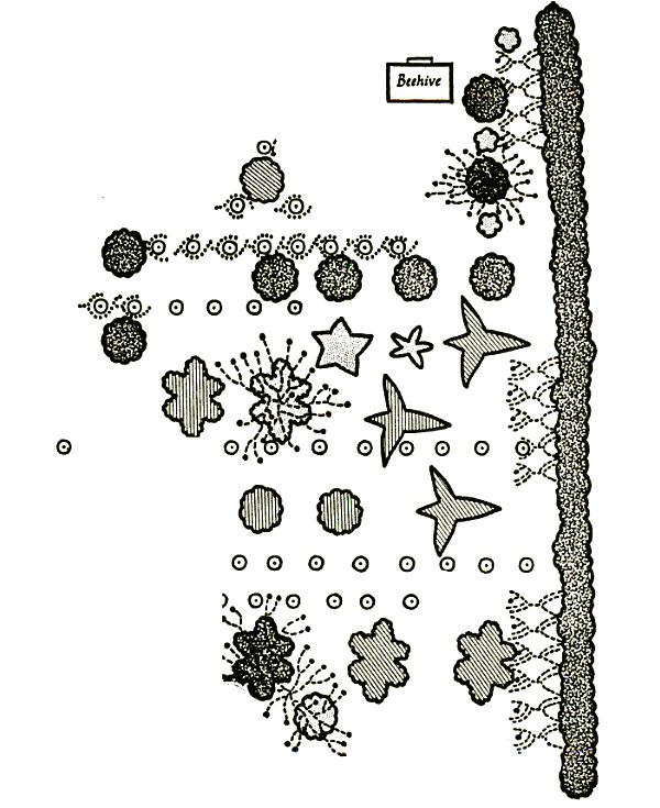 Mayan Garden from From 'Plants, man, and life' (1967)by Edgar Anderson.